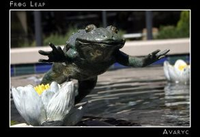 Frog Leap by Avaryc