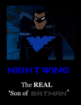Nightwing Motivational by MetroXLR99