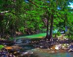 San Antonio River by znkf0908