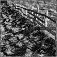 fence II by crh