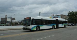 MTA Maryland Bus 08019 by JamesT4