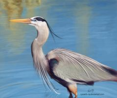 Color Study_Heron again -_- by Ryoseth-CP