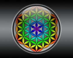 Flower of Life by lokispace