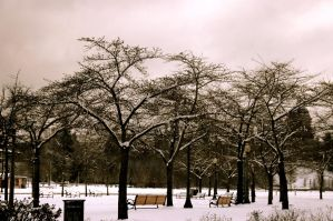 Snowy Park by hextakeshold