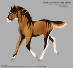 A3011 Foal Design by OpalSkye
