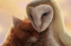 Love Knows No Boundaries by Elzux
