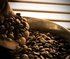 Coffee Beans by Obscurity-Doll
