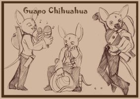 Guapo the Chihuahua by soapdish
