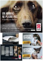 Campaign against the abandonment of pets in France by Hubert11