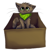Mystery Box-PC by rizusaur