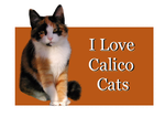 I Love Calico Cats by Loulou13