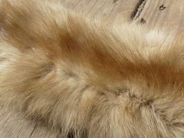 Mink Fur Closeup by Eliea