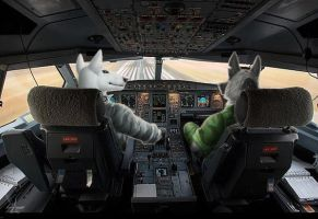 Boeing hijacking by BullTerrierKa