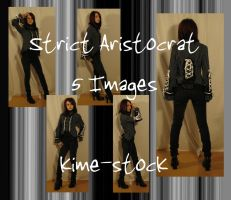 Strict Aristocrat by kime-stock