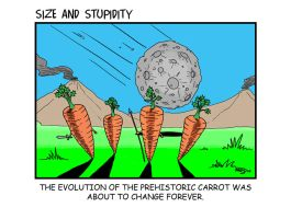 Carrots by Size-And-Stupidity
