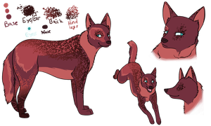 Commish-Australian Cattle Dog by nyra350