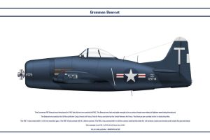 Bearcat USA VF-2A by WS-Clave