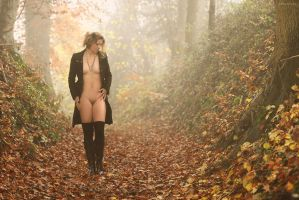 Autumn Fog by artofdan70