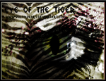 Eye Of The Tiger by ValorHeart
