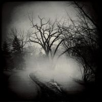 A Fork In The Road by intao