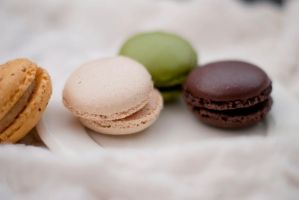 365.074: Some Macaroons, Please by linderel