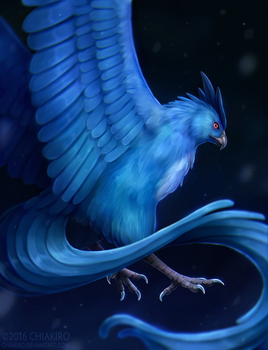 Articuno by Chiakiro