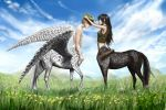 Centaur couple by Yet-One-More-Idiot