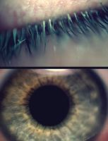 Eye Dyptych by NintendoChick109