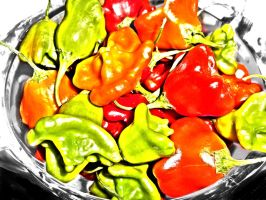 A bowl of hot by terra-icognita-topos