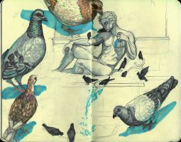 Pigeons by M-Spencer