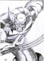 WOLVERINE by ronneyt