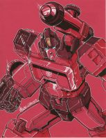 perceptor by markerguru