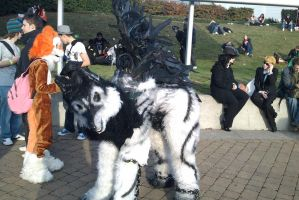 :MCM Oct 11: Winged Wolf by TheLupineOne