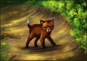 Baby fox by FoxDJ