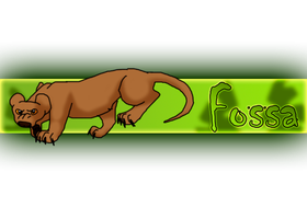 Fossa by RIOPerla