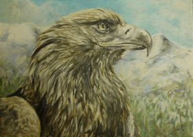 golden eagle portrait by acrylicwildlife
