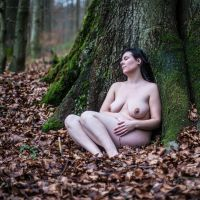 In the Forest II by rumi-kijay