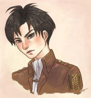 Levi (Sketch.ver) by akifune
