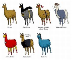 Llamas....llamas everywhere by Boggiewu