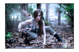 Lara Croft - Tomb Raider : Hero or Survivor by emptyfilmroll