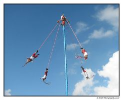 Sky Dancers by picworth1000wrds