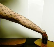 Leg - Fishnet Stock11 by D-is-for-Duck
