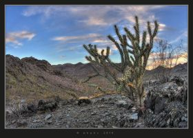 Desert HDR II by HogRider
