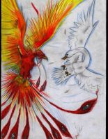 Phoenix color by qamil18