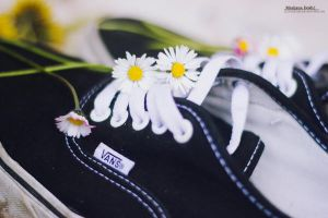Flo Vans by 2cool2care