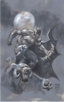 Batman Hush Unwrapped 7-2013 by myconius
