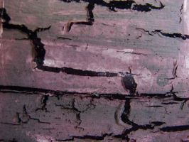 Wood Grunge by thiselectricheart