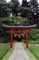Shinto Gates by beacoupfish