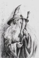 Gandalf the Grey by AlasseaEarello