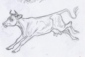 Penciled Cow by DianaKennedy